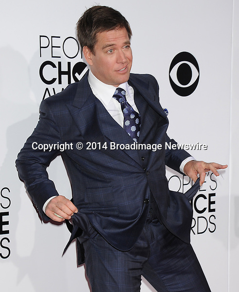 Pictured: Michael Weatherly<br /> Mandatory Credit &copy; Gilbert Flores /Broadimage<br /> 2014 People's Choice Awards <br /> <br /> 1/8/14, Los Angeles, California, United States of America<br /> Reference: 010814_GFLA_BDG_128<br /> <br /> Broadimage Newswire<br /> Los Angeles 1+  (310) 301-1027<br /> New York      1+  (646) 827-9134<br /> sales@broadimage.com<br /> http://www.broadimage.com