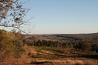 D'Aguilar Highway in Queensland, Australien, verbindet den Bruce Highway in der Nähe von Caboolture mit Kingaroy. Die Strecke ist ca. 163 km lang. .Auf dem Bild: Landschaft am Wegesrand...The D'Aguilar Highway is a two-lane highway linking the Bruce Highway near Caboolture with Kingaroy in the state of Queensland, Australia. Major towns along the route include Woodford, Kilcoy, Yarraman, Nanango and Kingaroy. The highway is approximately 163 kilometres (101 mi) in length...Foto: .Karoline Maria Keybe.01577 7729355.karoline@karoline-maria.com.Ernestistraße 12.04277 Leipzig.01577 7729355.Steuernummer: 231/238/07774..Deutsche Bank, Konto-Nr. 1272228, BLZ 86070024.Keine Umsatzsteuerpflicht nach Kleinunternehmerregelung § 19 Absatz 1 UStG