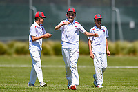 Medbury School players celebrate a wicket in the fianl against Hereworth School. National Primary Cup boys' cricket tournament at Lincoln Domain in Christchurch, New Zealand on Wednesday, 20 November 2019. Photo: John Davidson / bwmedia.co.nz