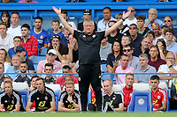 Sheffield United Manager, Chris Wilder during Chelsea vs Sheffield United, Premier League Football at Stamford Bridge on 31st August 2019