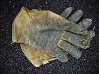 Well-worn glove sit on mulch in a garden..