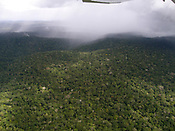 Floresta Nacional  Amaná