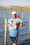 Volunteer returning a juvenile flamingo to the Fuente de Piedra  lagoon after Vets and biologists ringed the legs  and took blood samples from several hundred chicks.