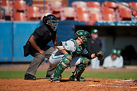 Dartmouth Big Green catcher Ben Rice (9) and the home plate umpire await the pitch during a game against the Bradley Braves on March 21, 2019 at Chain of Lakes Stadium in Winter Haven, Florida.  Bradley defeated Dartmouth 6-3.  (Mike Janes/Four Seam Images)