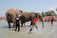 Worker cleans the area as circus elephants of the Caselly Family take a bath in lake Balaton in promotion of the Circus Night event at Balatonlelle (about 140 km South-West of capital city Budapest), Hungary on July 18, 2015. ATTILA VOLGYI
