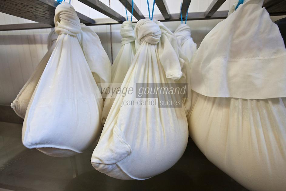 Europe/Europe/France/Midi-Pyrénées/46/Lot/Loubressac: Ferme Cazal-SARL Les Alpines - Production du Rocamadour AOC Fermier, aprés l'emprésurage le caillé est mis a égouter dans des sacs