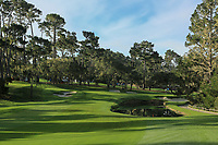 A general view of the 14th hole Spyglass Hill Golf Course during the first round of the AT&amp;T Pro-Am, Pebble Beach Golf Links, Monterey, California, USA. 07/02/2019<br /> Picture: Golffile | Phil Inglis<br /> <br /> <br /> All photo usage must carry mandatory copyright credit (&copy; Golffile | Phil Inglis)