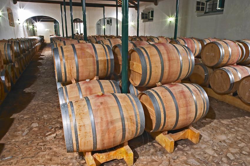 Oak barrel aging and fermentation cellar. Quinta do Carmo, Estremoz, Alentejo, Portugal