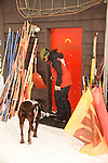 Crested Butte ski patrolman Shawn Williams and his chocolate avalanche rescue lab, Ziggy enter the ski patrol mountain on the mountain top.