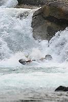 Submerged paddler Carl Jacks below a waterfall on the Kaslo River, Selkirk Mountains, BC.