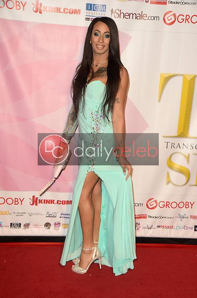 Honey Foxxx<br /> at the 2016 Transgender Erotica Awards, Avalon, Hollywood, CA 03-06-16<br /> David Edwards/Dailyceleb.com 818-249-4998