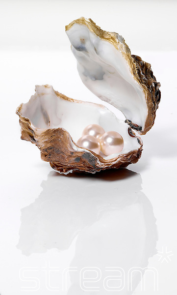 open oyster with pearls inside