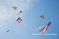 63495-02706 Kites flying at Flagler Beach Flagler Beach, FL