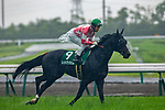 TOYOAKE,JAPAN-JUN 30: Red en CIel, ridden by Yuichi Fukunaga,is post parading before the CBC Sho at Chukyo Racecourse on June 30,2019 in Toyoake,Aichi,Japan. Kaz Ishida/Eclipse Sportswire/CSM