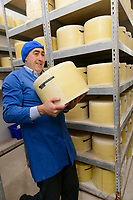 Staff member at the Cheddar Gorge Cheese Co,. Cheddar Gorge, Cheddar, UK, October 16, 2017. Spectacular Cheddar Gorge features the highest inland cliffs in the UK. The nearby village of Cheddar is also the birthplace of the eponymous cheese.