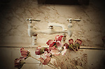 Dusty dried poppies in kitchen sink with old fashioned taps