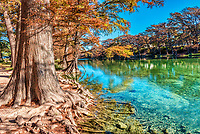 Fall Colors at Garner State Park -  We capture this wonderful cypress tree with it roots reaching out into the clear emerald waters along the Frio River. Garner State Park is very unique place with it emerald green clear waters of the Frio River as it flows through the canyons of the Texas Hill Country.  This place is an excellent place to be on a hot summer day.  However it can be just a beautiful on a fall day with the colorful fall colors of the cypress trees  and maples along the river with the emerald green waters. This is one of the most scenic places in Texas.