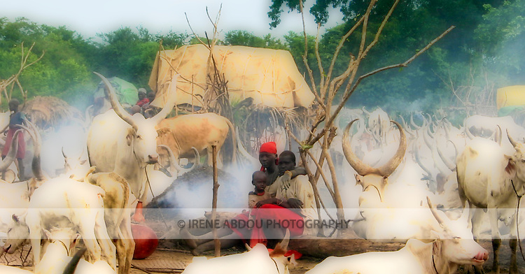 A Dinka family relaxes among its cows in a cattle camp near Rumbek, South Sudan. The Dinka tribe is the majority ethnic group in South Sudan. Its people are traditionally pastoralists.
