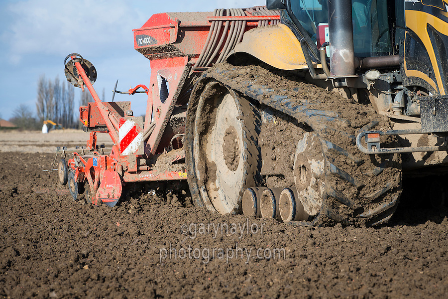 Combination drilling wheat into ploughing following sugar beet with a Kuhn 4 meter drill - February, South Lincolnshire