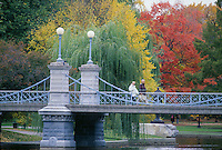 autumn, Public Garden. Boston, MA