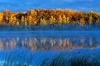 Autumn misty morning at Lake Metigoshe State Park, near Bottineau, North Dakota, AGPix_0594.