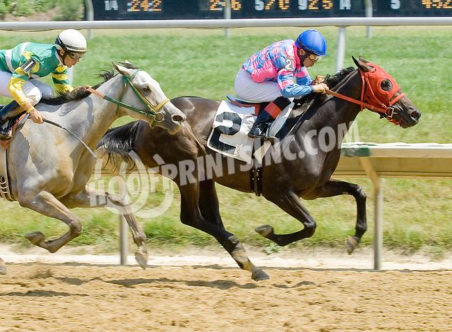 Tizashadow winning at Delaware Park on 7/4/12