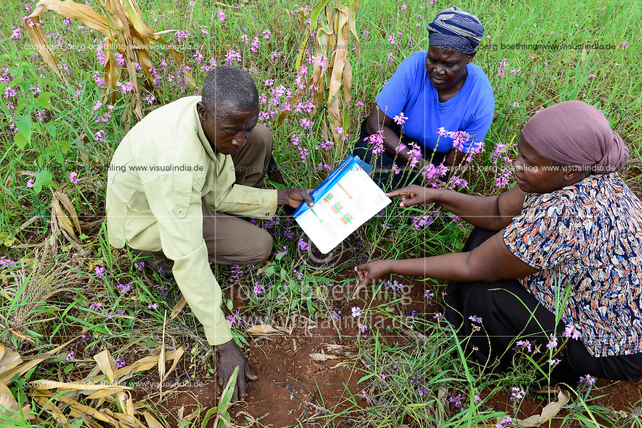 KENYA, Kakamega, farming, soil analysis / KENIA, Kakamega, GIZ Mitarbeiterin (rechts) mit Kleinbauern bei einer Auswertung einer Bodenanalyse