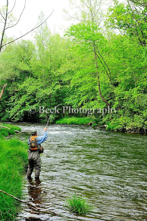 Broadheads Creek in Pa.