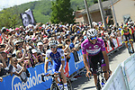 Fernando Gaviria (COL) Quick-Step Floors Maglia Ciclamino arrives at sign on before the start of Stage 14 of the 100th edition of the Giro d'Italia 2017, running 131km from Castellania to Oropa, Italy. 20th May 2017.<br /> Picture: LaPresse/Fabio Ferrari | Cyclefile<br /> <br /> <br /> All photos usage must carry mandatory copyright credit (&copy; Cyclefile | LaPresse/Fabio Ferrari)