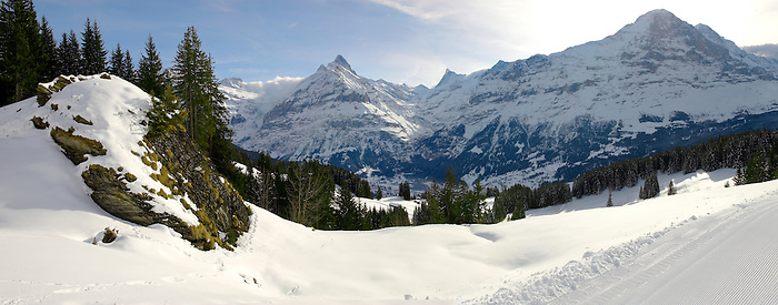 Busalp tobogan slopes - near Grindelwald - Swiss Alps - Switzerland
