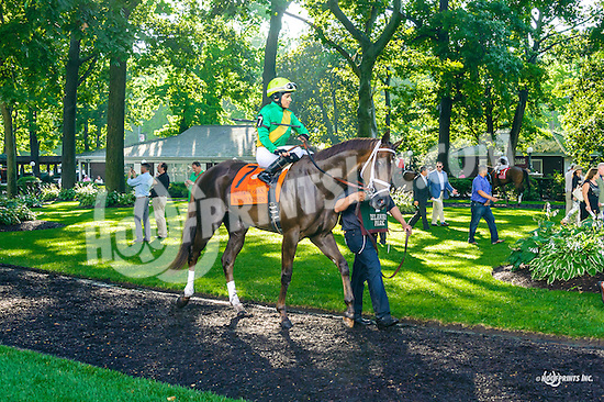 Kinsley Kisses before The Delaware Oaks (gr 3) at Delaware Park on 7/9/16
