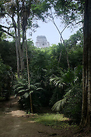 Temple IV at Tikal, seen through the jungle.