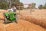 EDGE & TA Branch 158 Threshing Show and old-time harvest