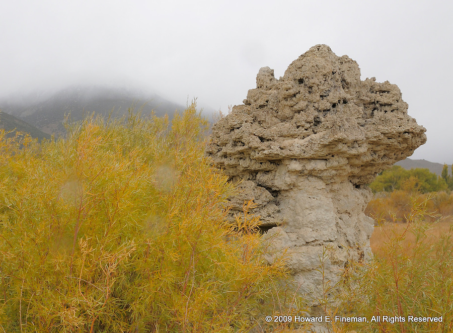 Tufa, North End of Mono Lake