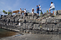 Government officials and locals keeping their eyes on a Hawaiian monk seal (Monachus schauinslandi) that is basking on a boat ramp at Honokohau Harbor, Kona Coast, Big Island