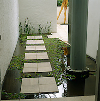 Symmetrical stepping stones on a lily pond at the base of the house in a garden designed by Tarna Klitzner