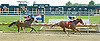 My Misty's Echo winning at Delaware Park on 9/03/11