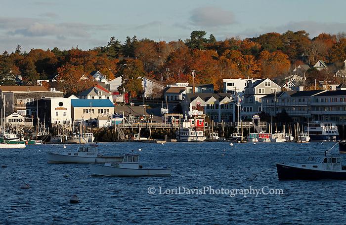 Autumn Light, Boothbay Harbor #2