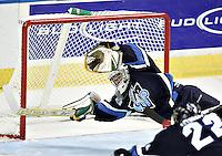 QMJHL - Rimouski Oceanic 2007-2008
