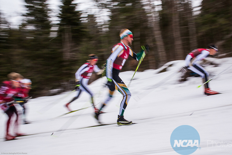 13 March 2015: A blur of racers skis through the woods in NCAA Division 1 Skiing Championship held at Mt. VanHoevenberg, Lake Placid, NY, Men's Classic 20k race. Nancie Battaglia/NCAA Photos