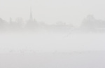 Church steeple surounded by fog across a pond.