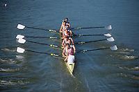 Stanford Crew M