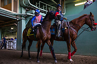 ARCADIA, CA - MARCH 11: Iliad #6, ridden by Flavien Prat finishes Second in the San Felipe Stakes at Santa Anita Park  on March 11, 2017 in Arcadia, California. (Photo by Alex Evers/Eclipse Sportswire/Getty Images)