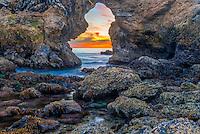 Coastline at Cameo Shores in Orange County California