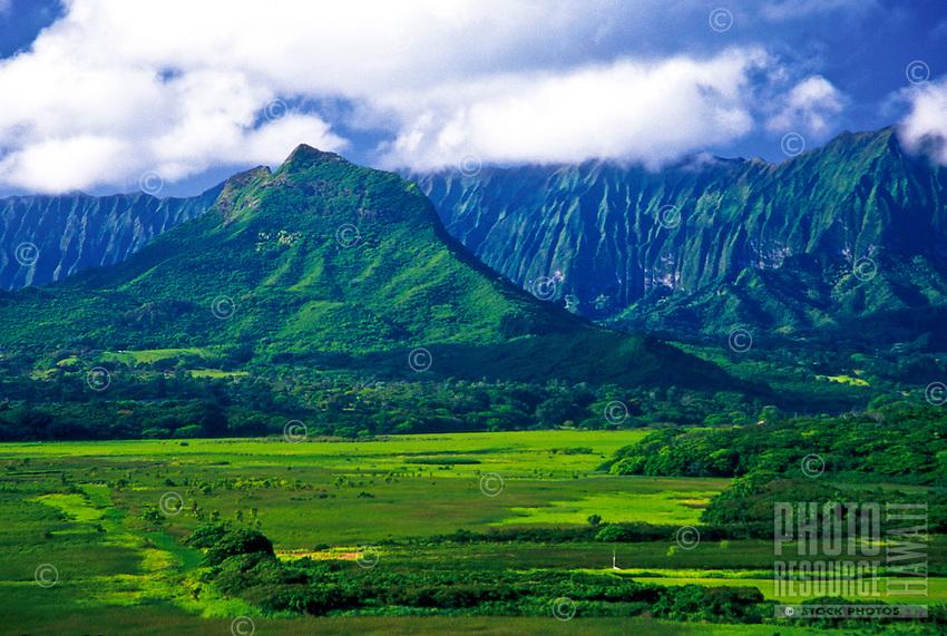 Kawainui Marsh leads to Mount Olomana and Koolau Mountains