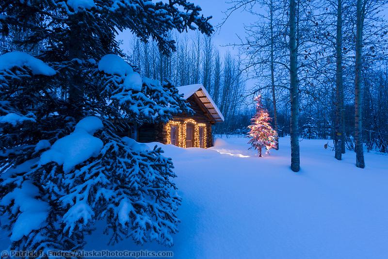 Rustic log cabin in the woods, Wiseman, Alaska.