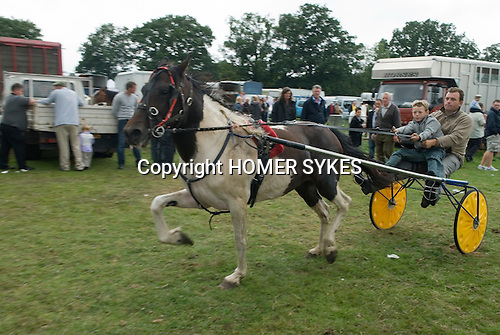 Barnet Gypsy Horse Fair Hertfordshire UK. Father and son showing a trotting pony thats for sale.