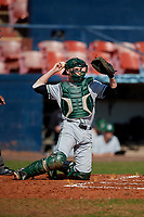 Dartmouth Big Green catcher Ben Rice (9) during a game against the Bradley Braves on March 21, 2019 at Chain of Lakes Stadium in Winter Haven, Florida.  Bradley defeated Dartmouth 6-3.  (Mike Janes/Four Seam Images)