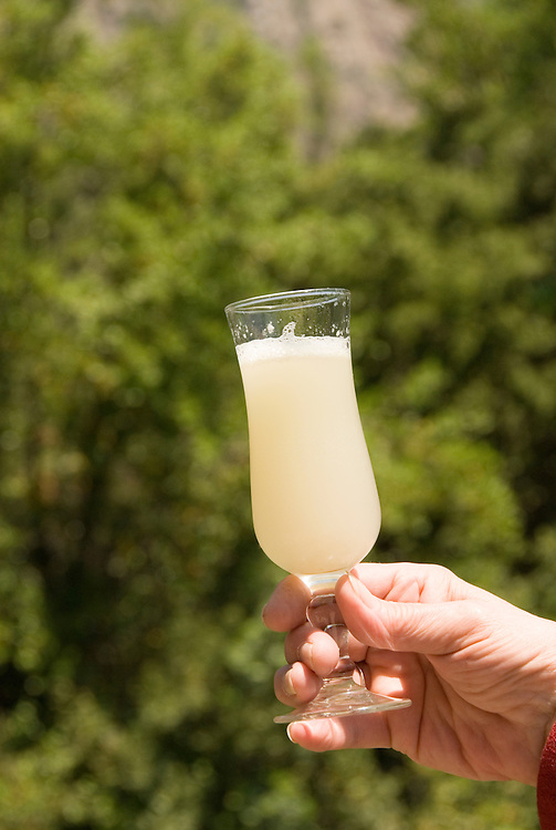 Chile: Pisco Sour, traditional drink..Photo #: 488-32948..Photo copyright Lee Foster, 510-549-2202, www.fostertravel.com, lee@fostertravel.com.