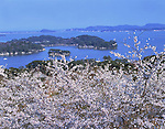 April 01, 2005: File photo showing Matsushima, Miyagi Prefecture, Japan taken in April 01, 2005. Matsushima was renowned for its natural beauty but  devasted by the massive magnitude 9.0 earthquake and subsequent tsunami that struck the eastern coast of Japan on Fraiday 11th March, 2011...